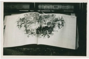 What appears to be termite damage to Summit County deed records, ca. 1940. Via the Ohio Guide Collection on Ohio Memory