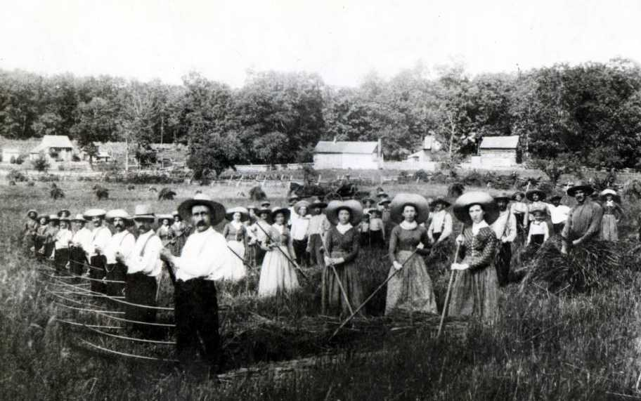 Zoarites harvesting grain in 1888, via Ohio Memory.