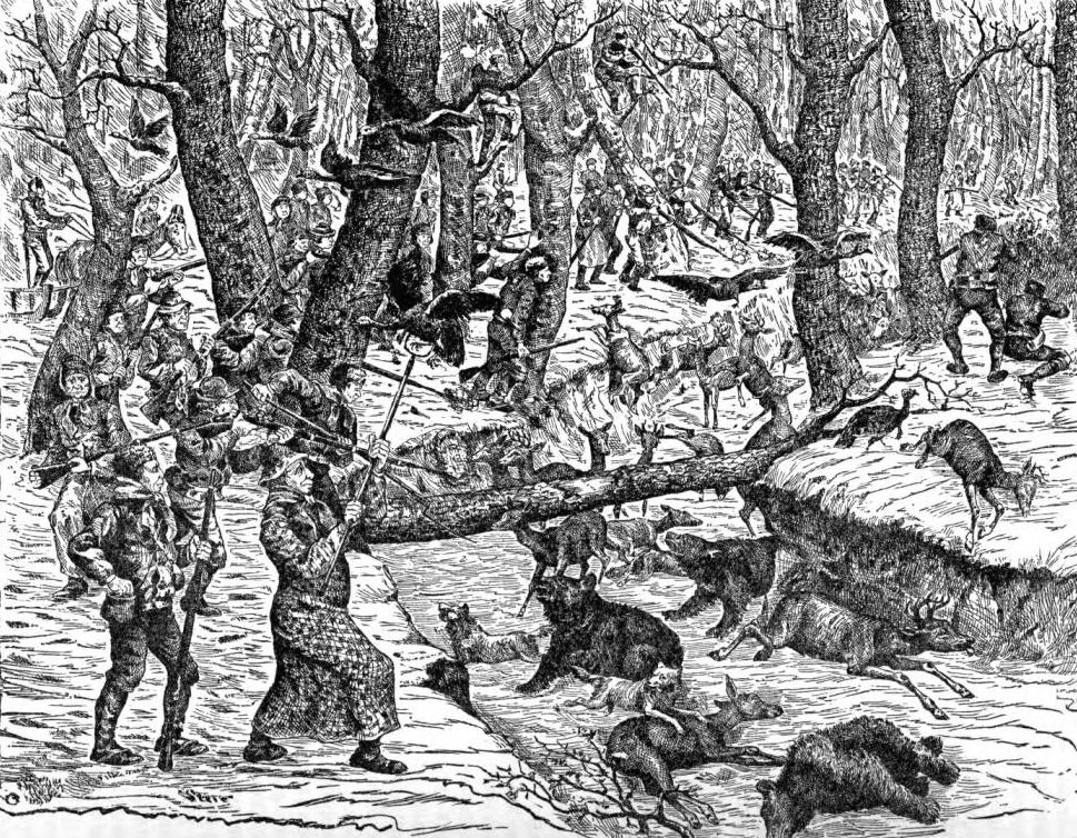 "Illustration depicting the ""Great Hinckley Hunt,"" from Henry Howe's ""Historical Collection of Ohio,"" 1907. Via Ohio Memory."