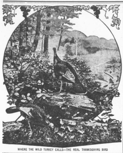 A wild turkey picture from the Greenville Journal (November 23, 1916, p. 6).