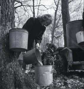 Ellen Bromfield, daughter of author Louis Bromfield, collecting sap in preparation for sugaring on Malabar Farm in Lucas, Ohio, 1947. Via Ohio Memory.