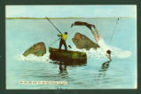 Indian Lake Fish Top Stories Postcard